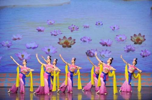 Shen-Yun lotus -770575