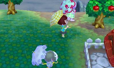 J'aurais mieux fait de rester sur l'île d'ailleurs, car à mon retour, il pleuvait. On a tous sorti nos pébroques et on avait pas l'air très malin...