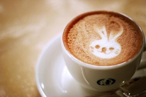 Le café le plus choupi du monde.