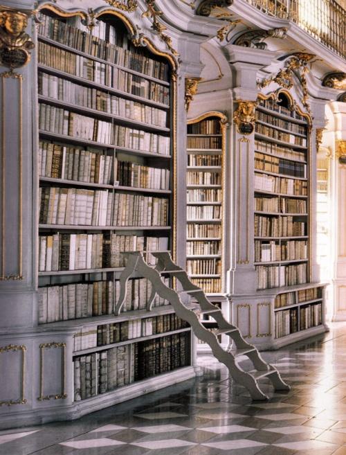Une bien belle salle-bibliothèque. Avec échelle et tout.