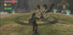 Skyward Sword Fight