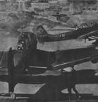 Junkers Ju 87 B1 Stuka-13d