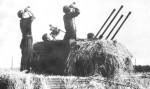 flakpanzer Wirbelwind Sdkfz 161 4-01d
